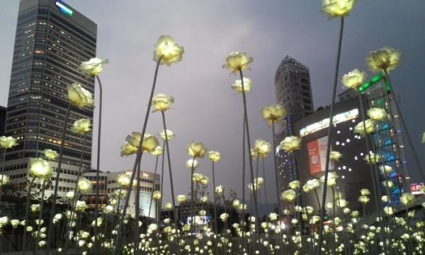 đèn led thế giới chiếu sáng