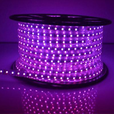 Đèn LED dây 5050 cuộn 100m màu tím 60led/m