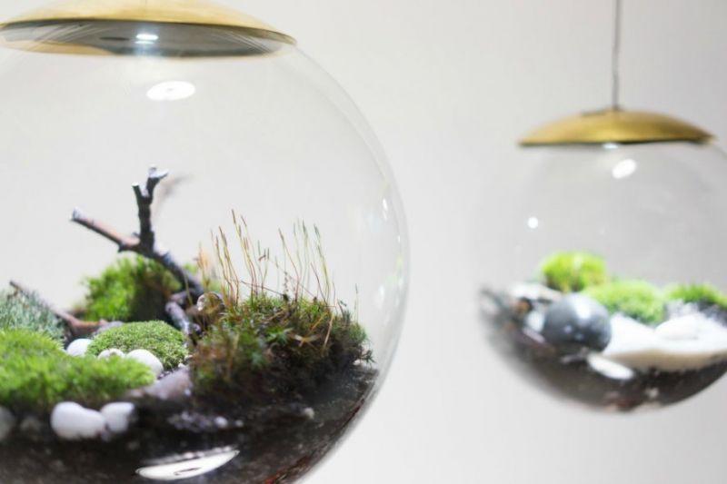 Bóng đèn LED sinh thái: tuyệt chiêu tạo không gian xanh trong nhà