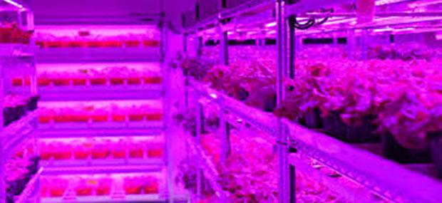 Xu thế đèn LED trong nền công nghiệp 4.0
