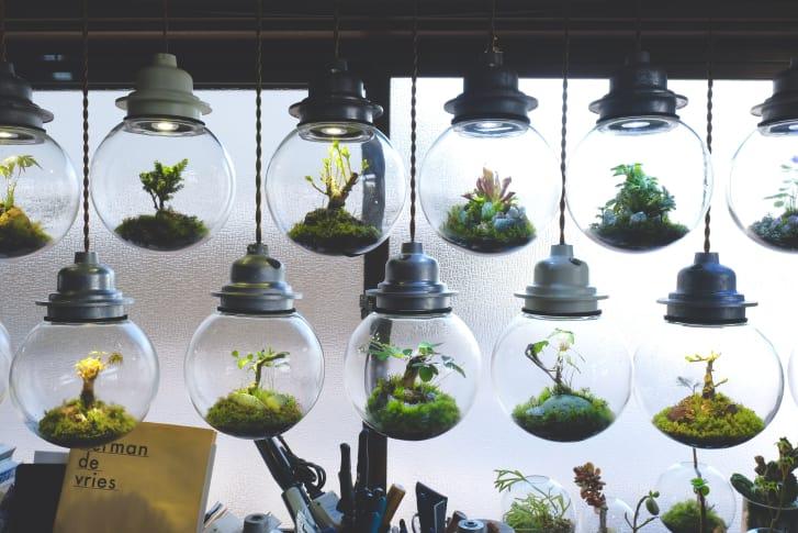 Xem bố cách cục đèn LED siêu nghệ thuật của một nghệ sĩ Nhật